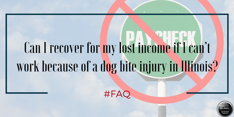 How will you gain the income you need if a dog attack has disabled you?