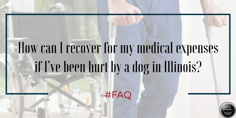 File a claim for all your medical expenses after a dog attack