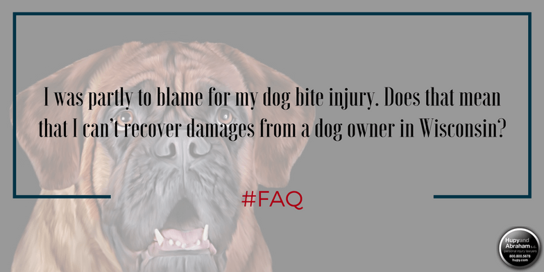 You may be able to make a dog bite recovery even if the dog was not 100% to blame