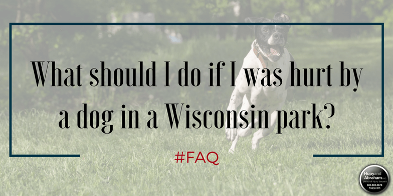 Get medical attention if you are attacked by a dog in a Wisconsin park