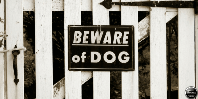 The owner or person in charge of a dog is responsible for dog bite injuries in Illinois