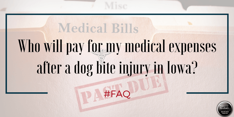 A fair dog attack recovery will cover all your related medical bills
