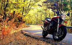 Motorcycle in Fall