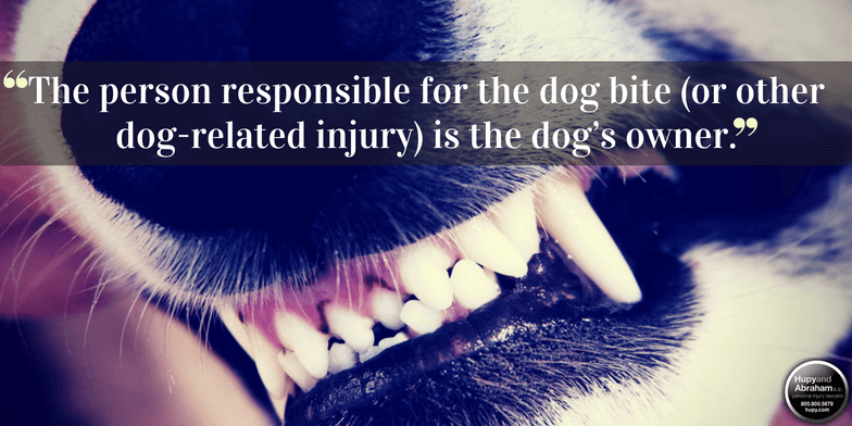 State law determines your legal options after a dog bite injury in Illinois