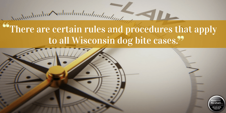 Wisconsin's legal system can give you a fair recovery for a dog bite injury