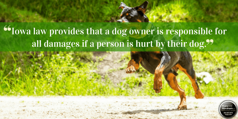 Iowa law makes the owner financially liable for most dog bites