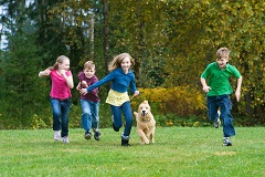 Your day care facility should be alert to dangers when kids play with dogs