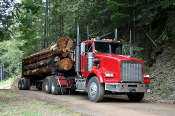 logging truck accident lawyer