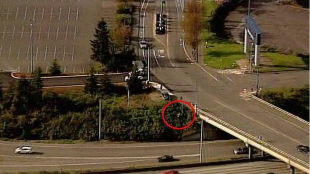 Tacoma hit-and-run