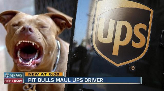 ups driver mauled by pit bulls