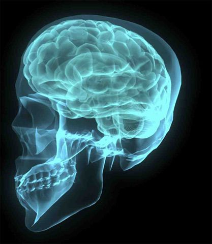 Traumatic Brain Injury Lawyer Seattle
