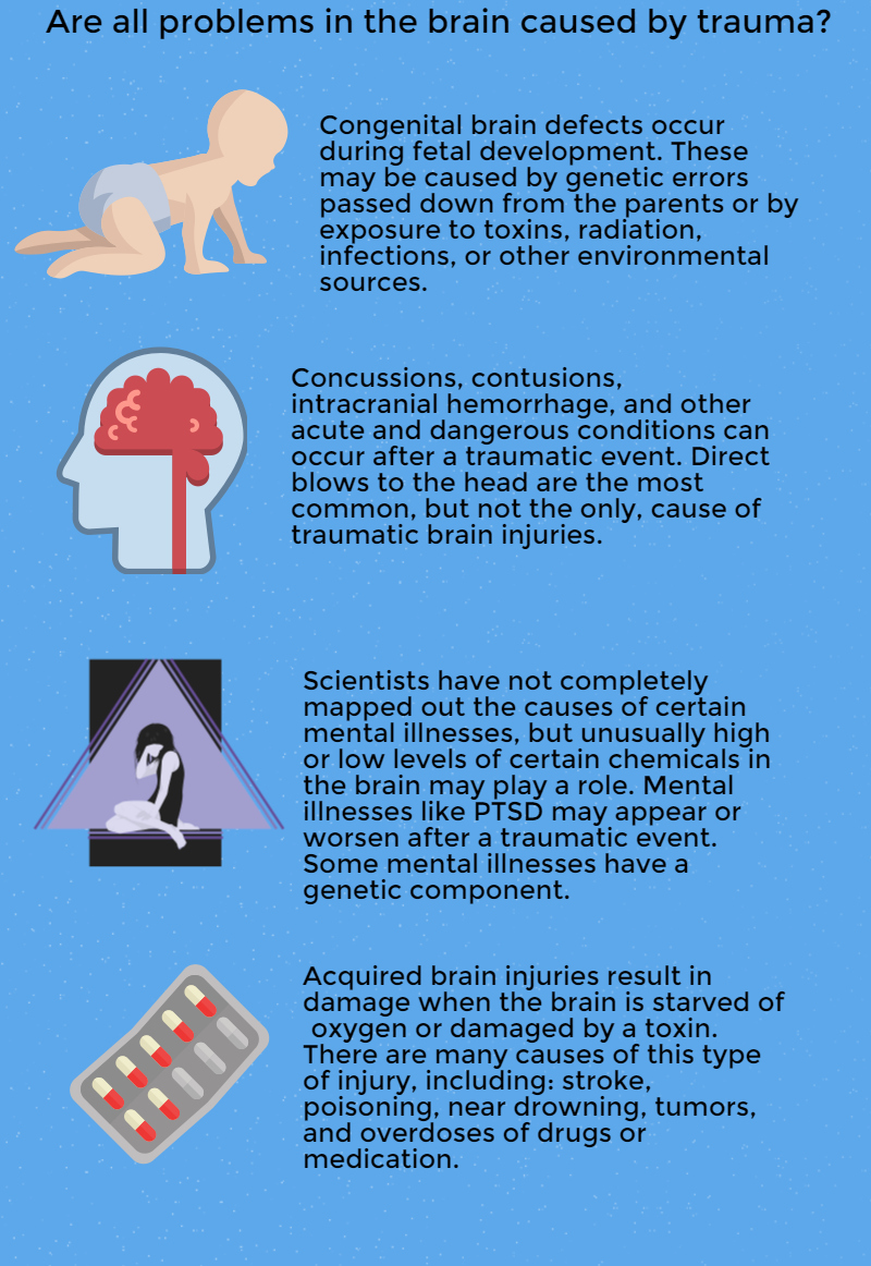 brain injuries infographic 3