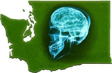 Brain injury attorney in Bellevue
