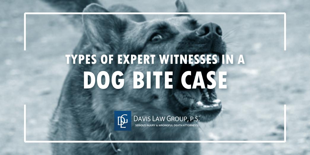 dog bite expert witness