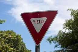 accident caused by failure to yield