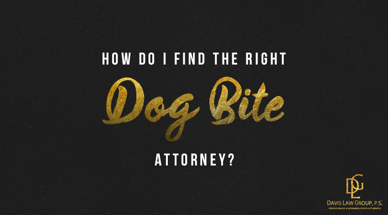 choose right dog bite lawyer