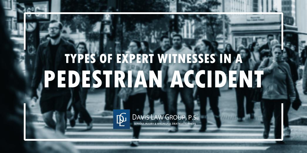 pedestrian expert witness