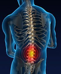spinal cord injury victims may have answer