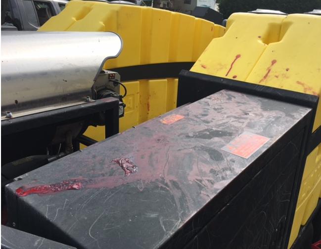 Pitbulls attack UPS driver