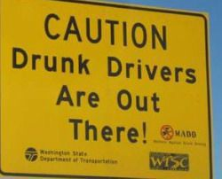 drunk drivers children