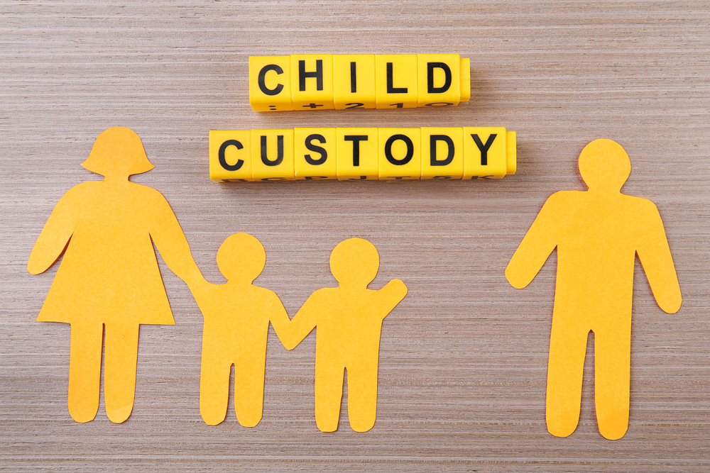 understanding the role of the guardian ad litem in a divorce case Explanation of guardian ad litem appointment  regarding the guardian ad litem and his or her role in  private guardian ad litem in a criminal case.