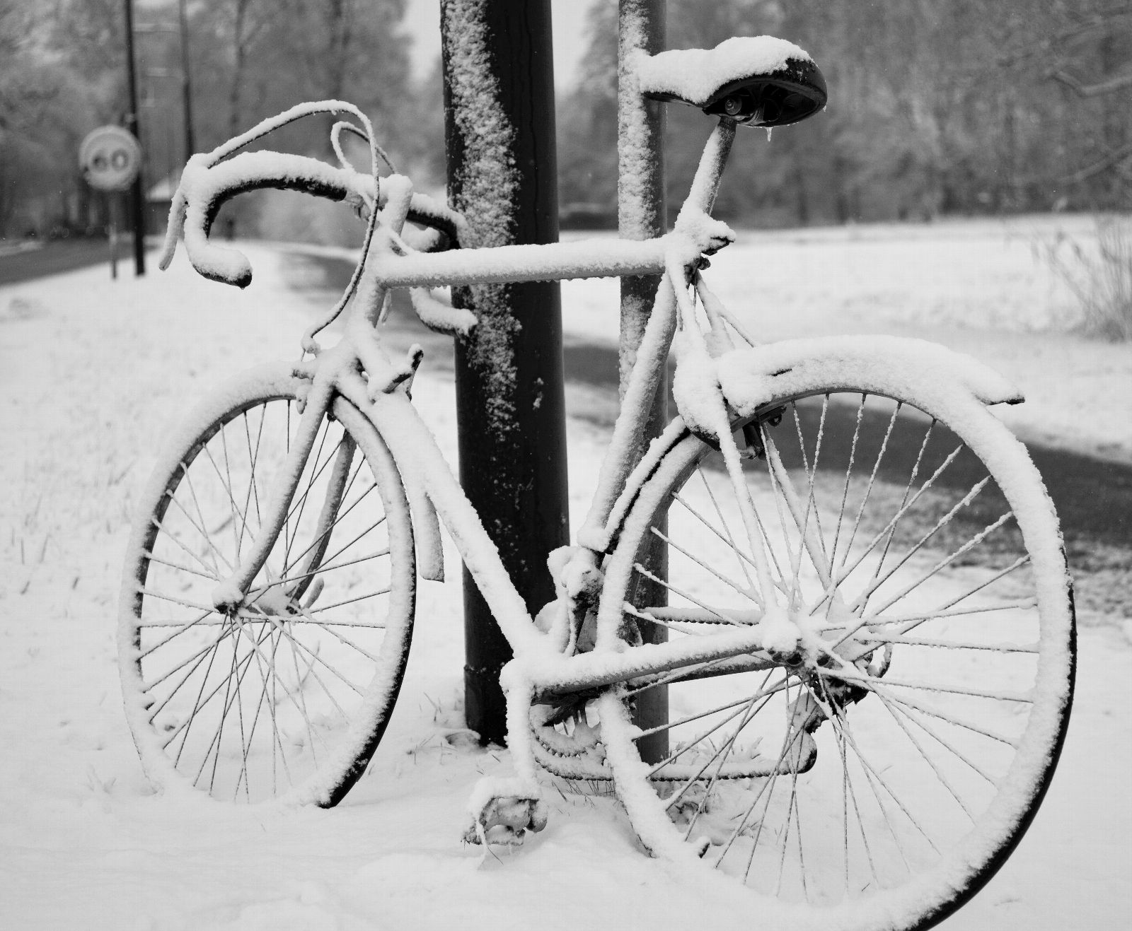 Bicycle Leaning Against Pole in Snow