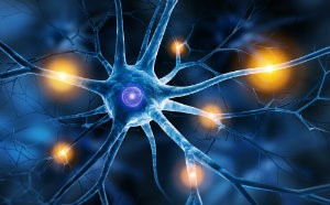 calming your nerves about nerve surgery mcdowell orthopedics