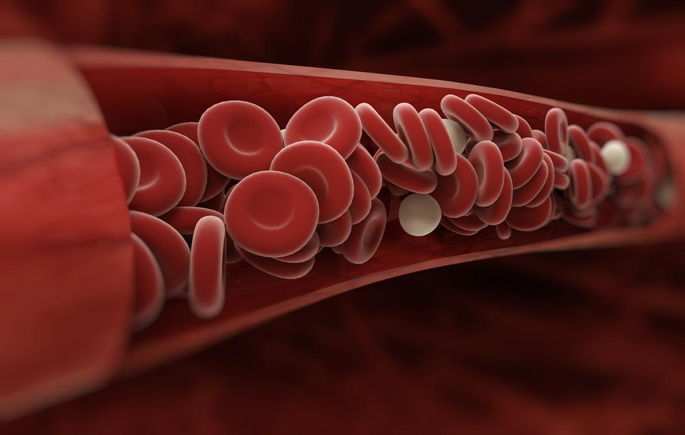 Illustration of blood flow through veins
