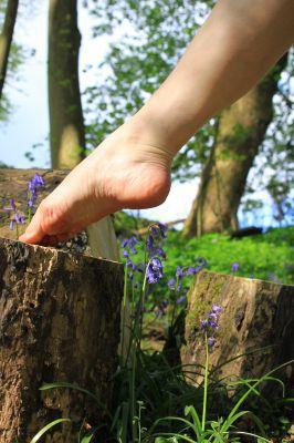 Foot on log outside