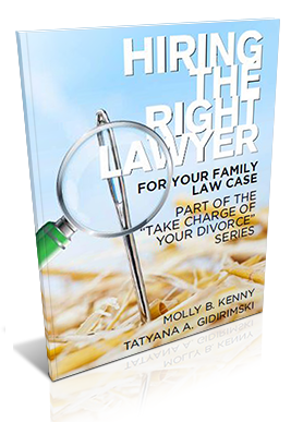 Free Guide on how to hire the right family lawyer