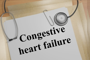 Medical folder with congestive heart failure printed on it.