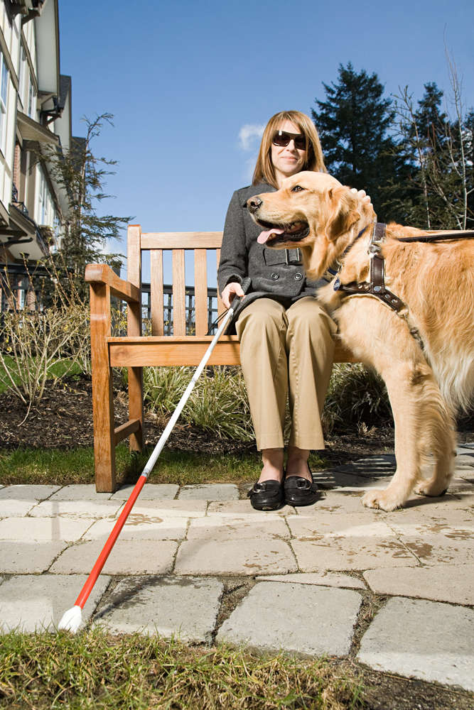 Blind woman sitting on bench with leader dog