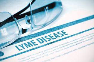 lyme_disease
