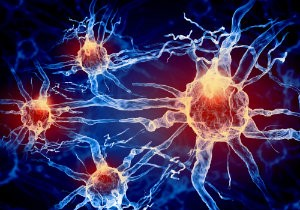 Neuropathy causes