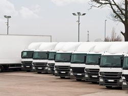 Commerical Trucks Lined Up in a Row