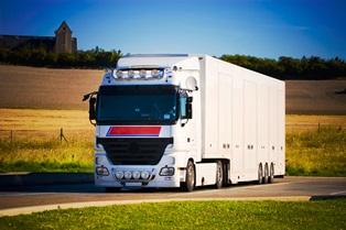 large truck_field
