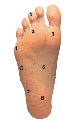 Foot And Ankle Pain Diagram By Area Long Beach Ca Sol Foot