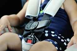 A Young Child Buckled in Her Car Seat