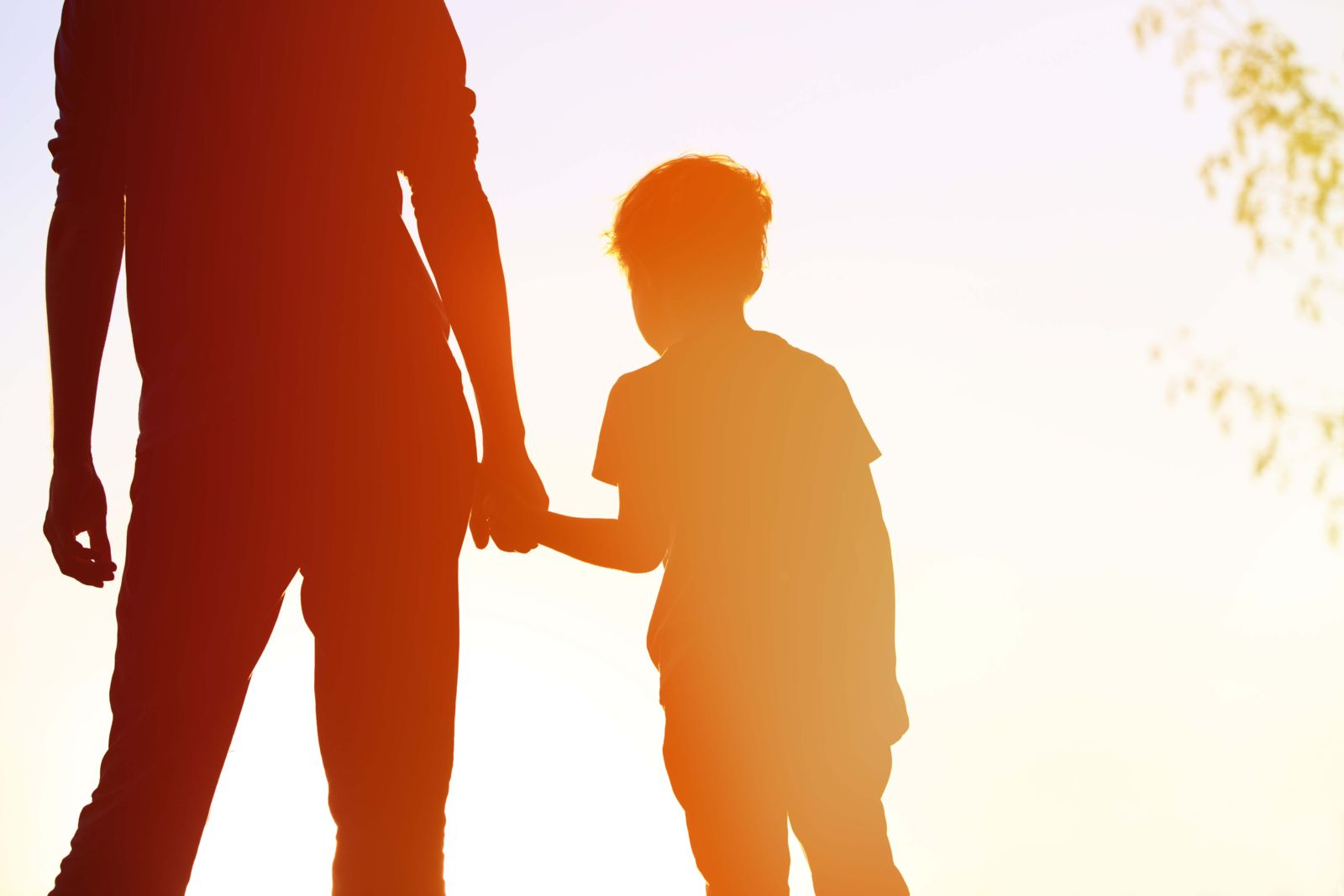 New child support guidelines and the rules they set forth