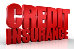 Credit Insurance in Red Block Letters