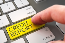 Yellow Credit Report Button