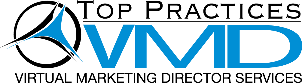 Virtual Marketing Director Services