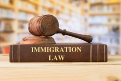 Immigration Law Book With Gavel