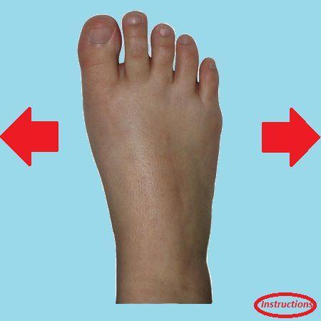 Dorsal Foot