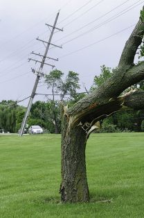 A Leaning Power Line After a Big Storm