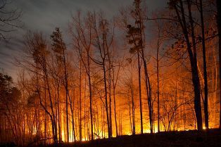 When are wildfires a risk?