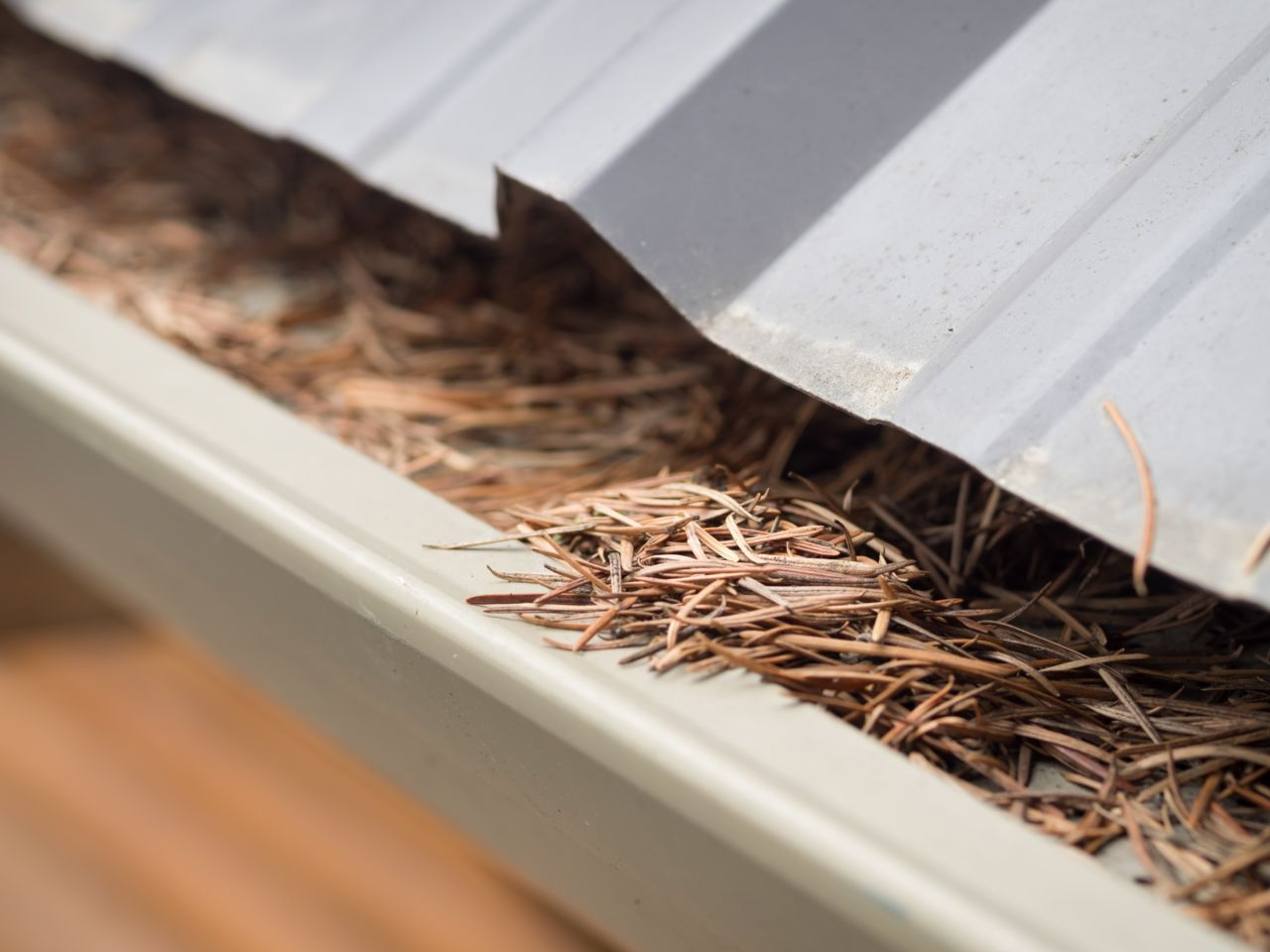 Gutter Spring Maintenance to avoid damage