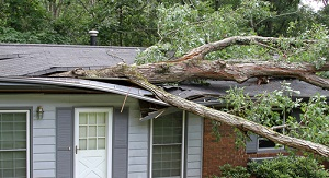 Spring storms can involve surprisingly costly cleanup efforts