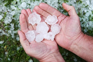 A double handful of fallen hailstones