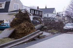 After a hurricane, assess your losses before dealing with the insurance adjuster